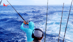 How to Drop Back to Billfish