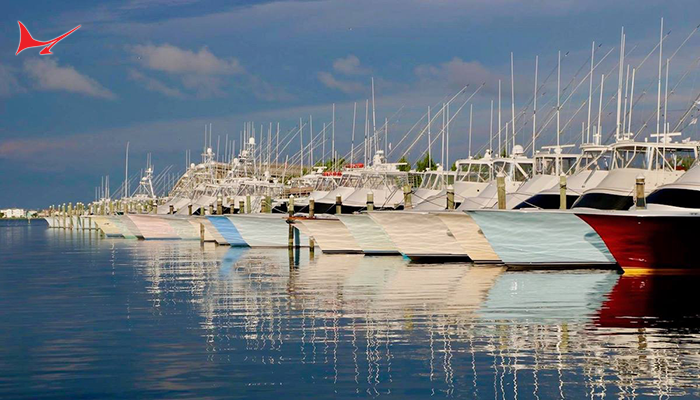 36th Annual Pirate's Cove Billfish Tournament Updates