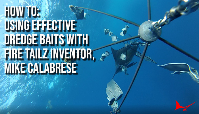 How To: Using Effective Dredge Baits with Fire Tailz Inventor, Mike Calabrese