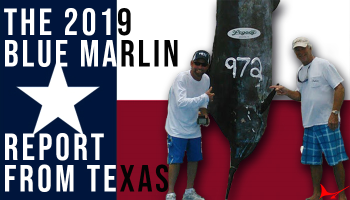 The 2019 Blue Marlin Report from Texas
