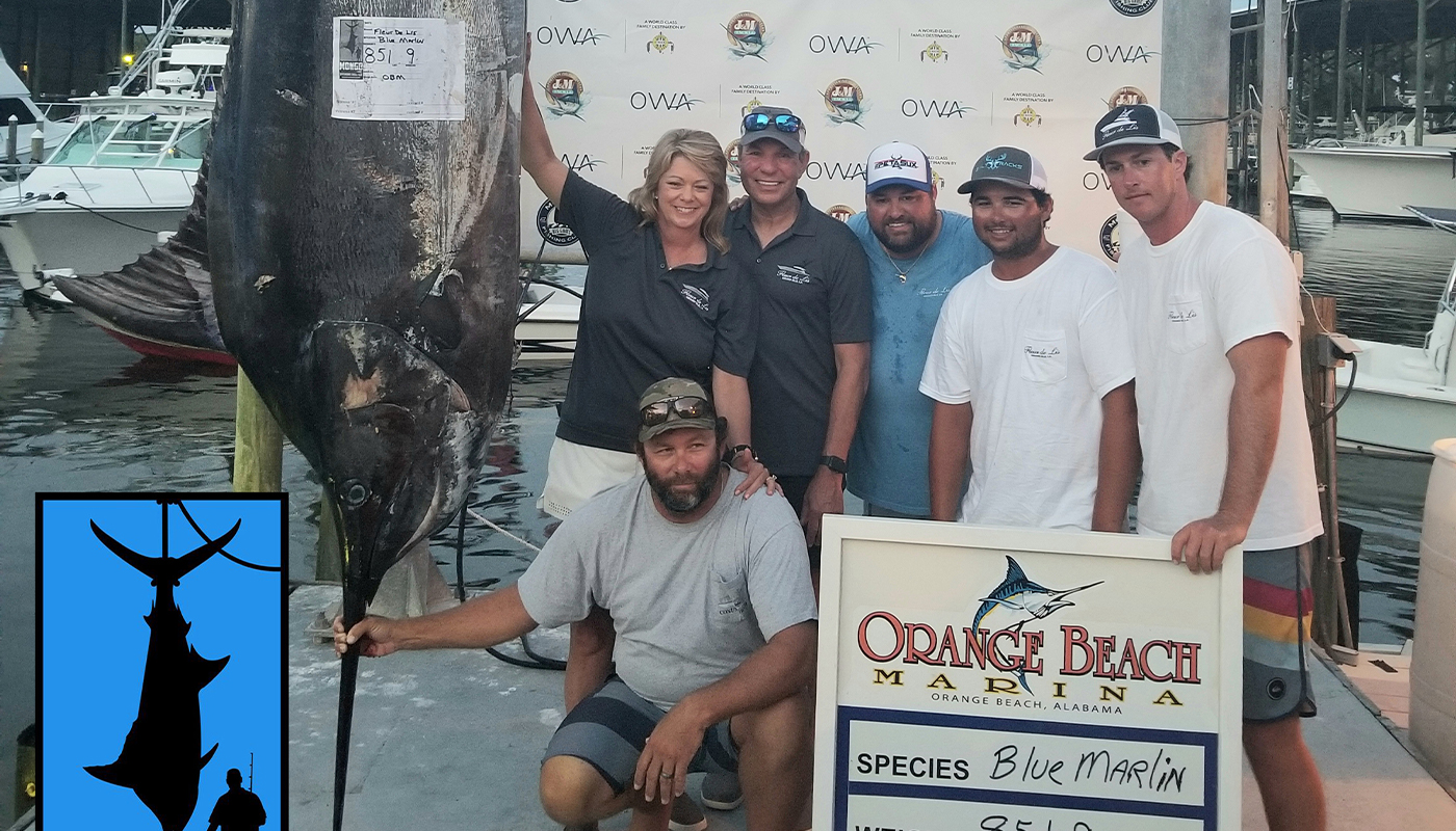 New Pending Alabama State Record for Blue Marlin Caught in the Mongo Offshore Challenge