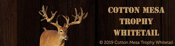 Cotton Mesa Whitetail
