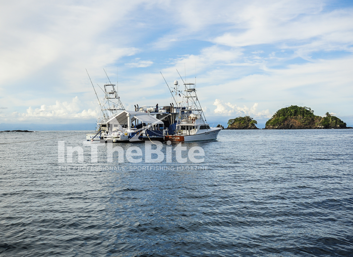 Originally a servicing vessel for offshore oil platforms, the 89 foot 1966 Halter Marine boat, the Mama Nido is now a Mothership in Panama. Photo Jessica Haydal