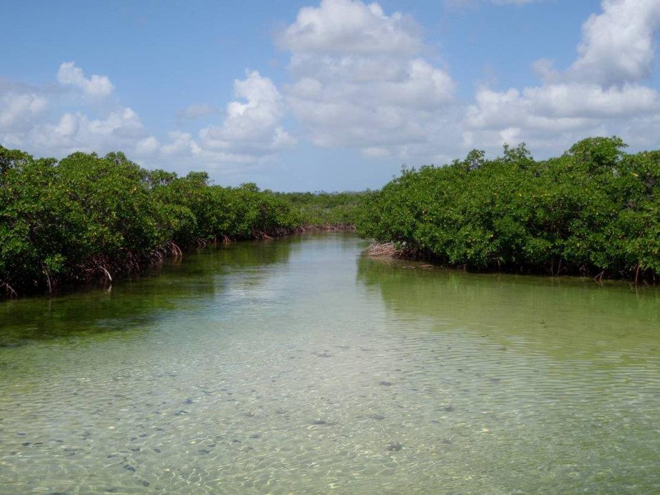 East Abaco Creek