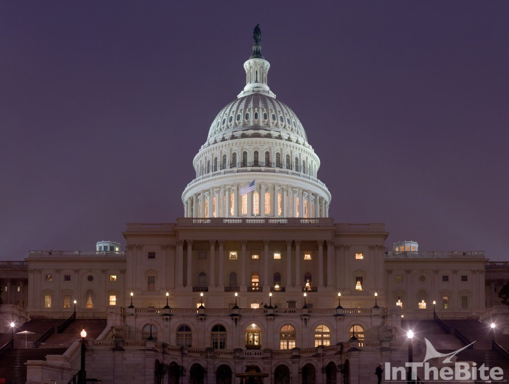 4096px-US_Capitol_Building_at_night_Jan_2006
