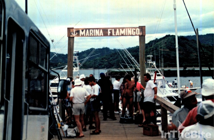Flmaingo Marina was the epicenter of Costa Rican sportfishing in the early 1990s.