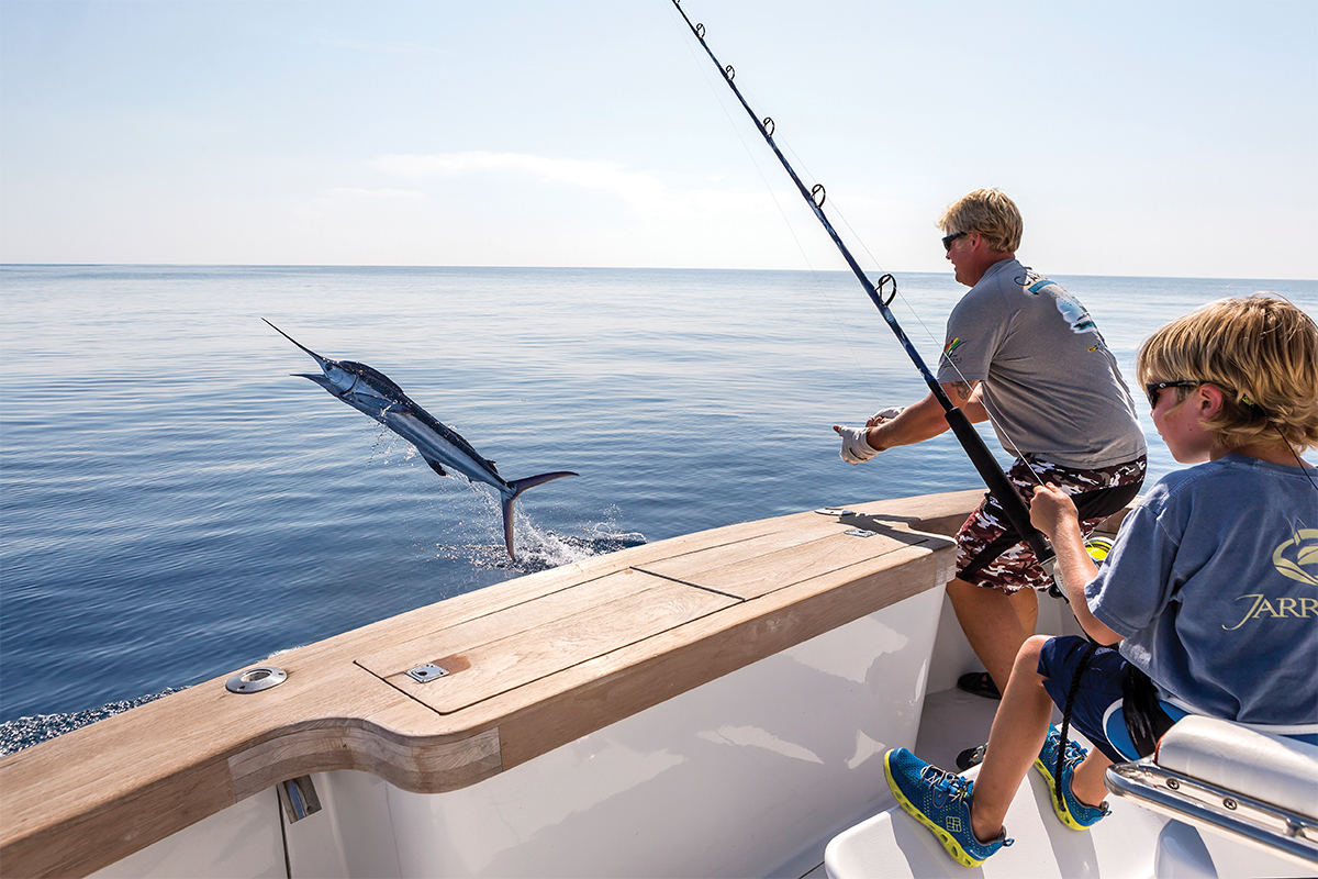 child in fighting chair with hooked billfish jumping