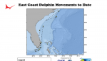 East Coast Dolphin Movements to Date