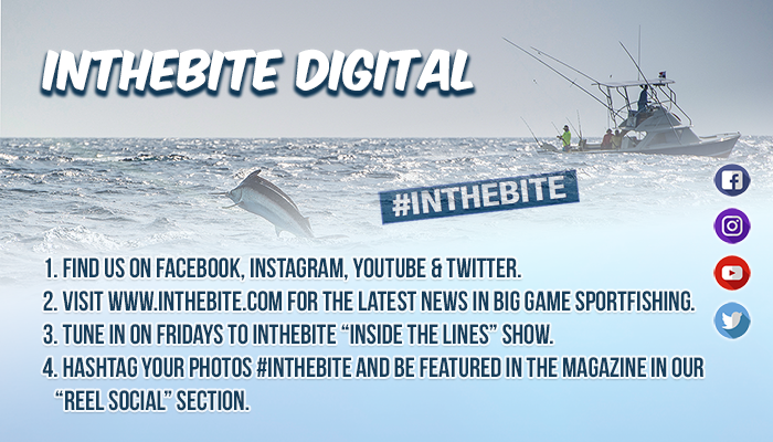 InTheBite Digital Offerings: Get in the Know