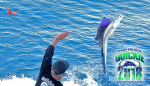 "The Fish Heads of Stuart: 2018 ""Quickie"" Sailfish Tournament"