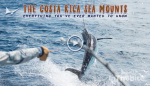 The Costa Rica Sea Mounts with Maverick Sportfishing
