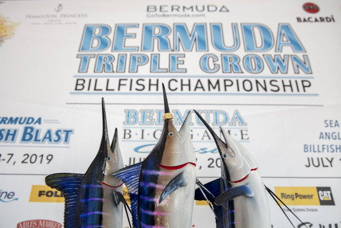 Bermuda Triple Crown Banner