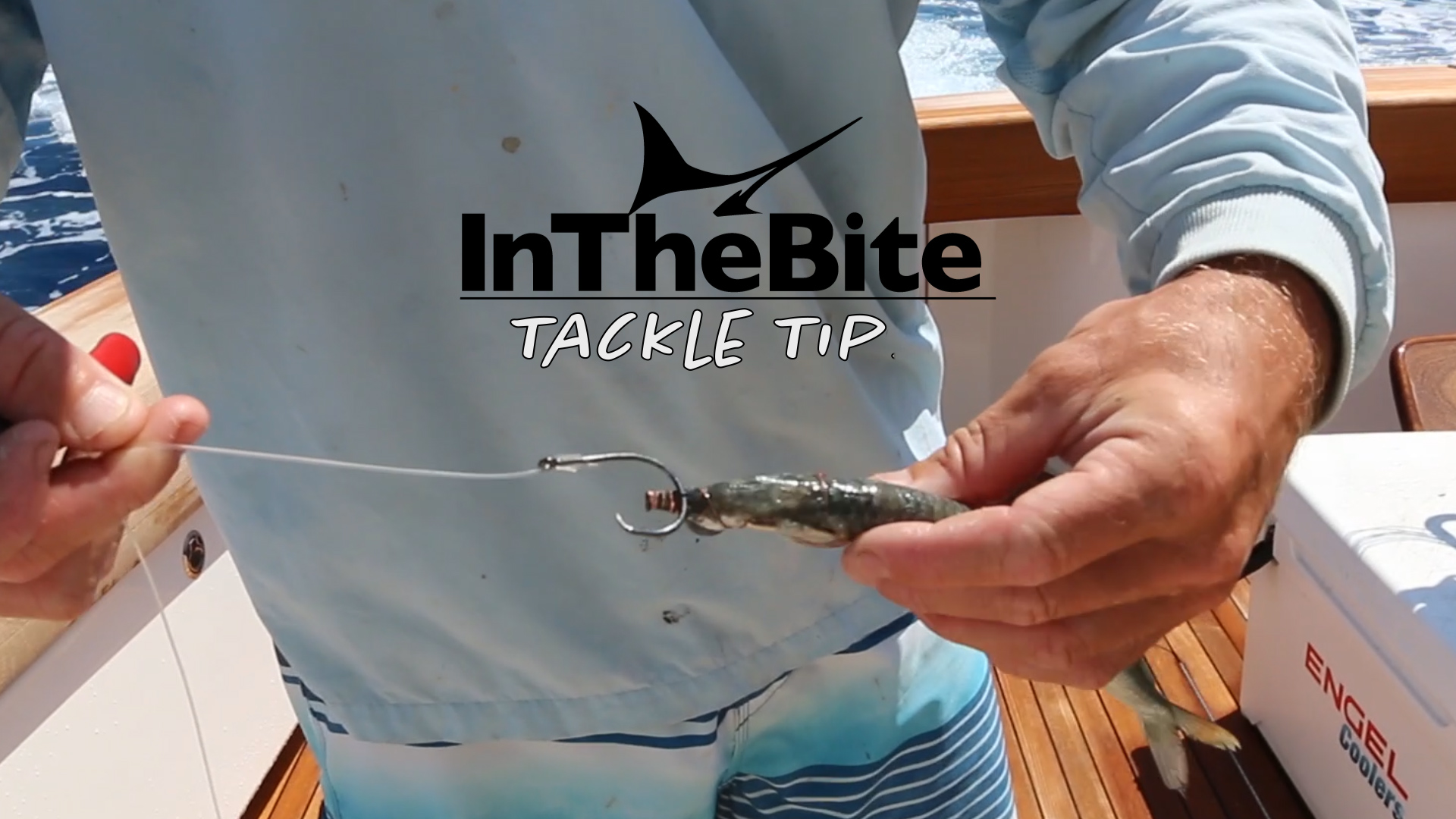 Tackle Tip: Rigging Bait with Luke Hickey