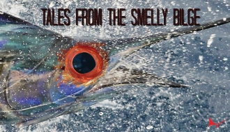 Tales from the Smelly Bilge: Feminists Blockade Marlin Tournament: Event Canceled