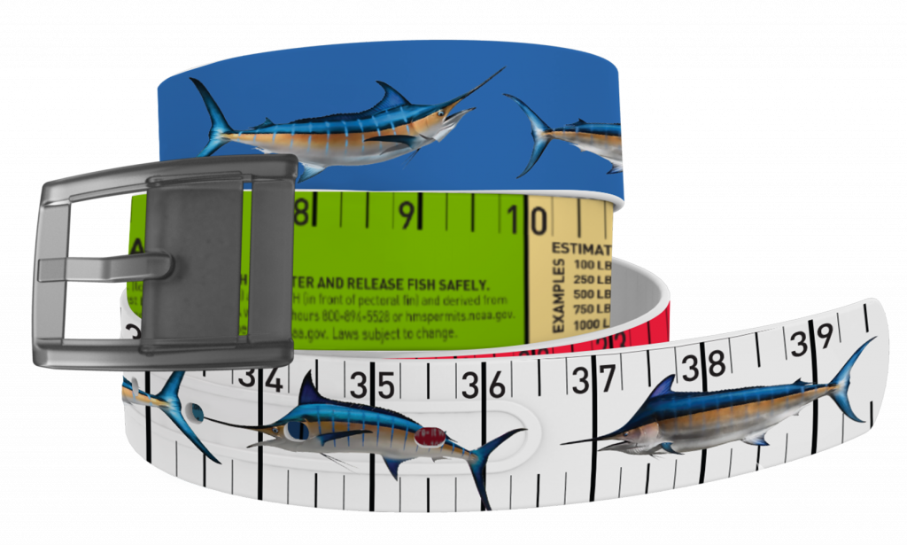 coiled marlin release ruler belt