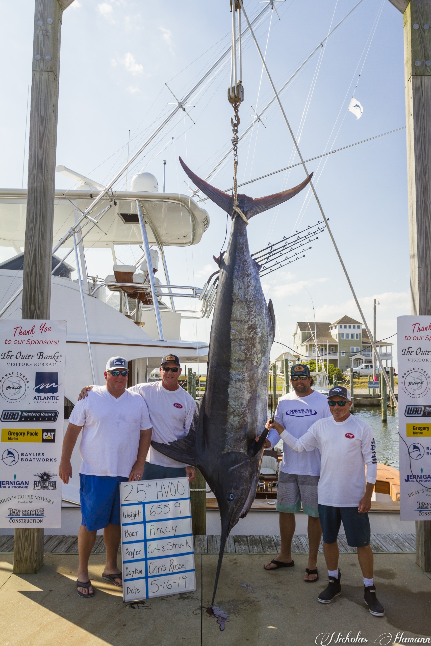 blue marlin on scale