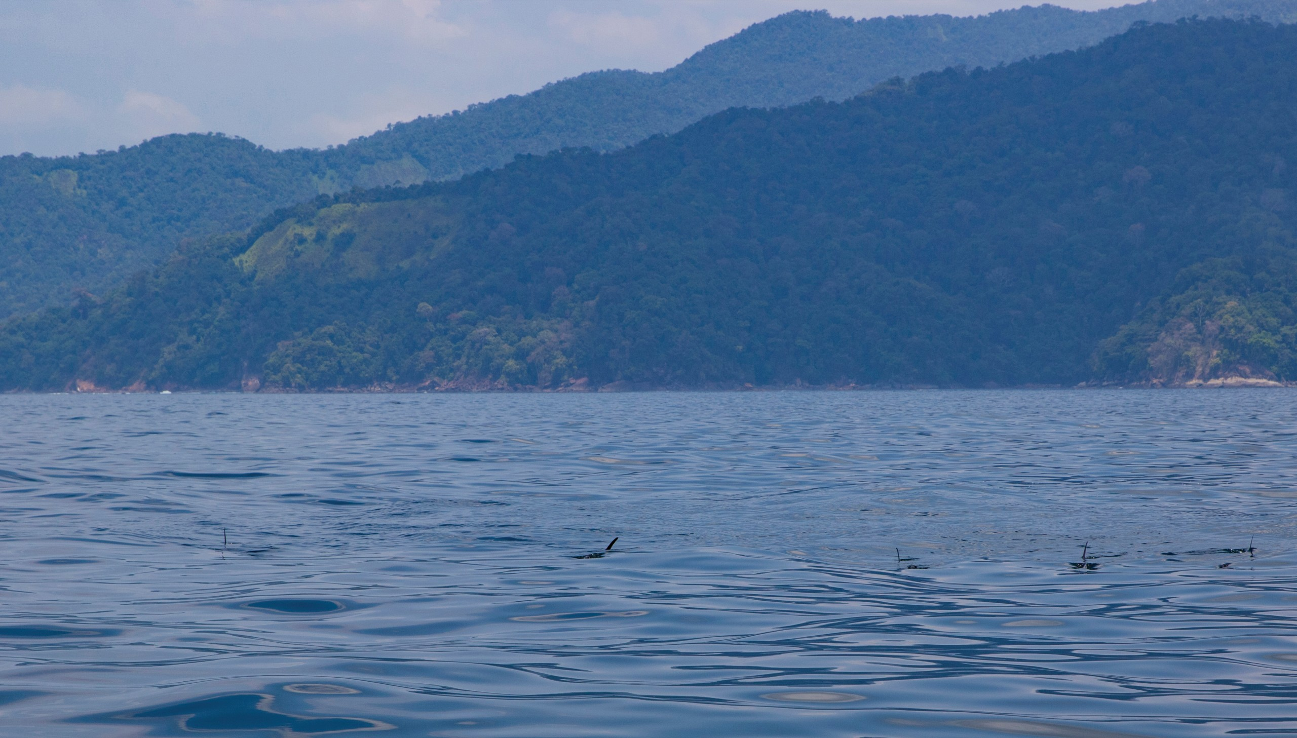 The Pacific Coast of Colombia — World Class Fishing and Hospitality