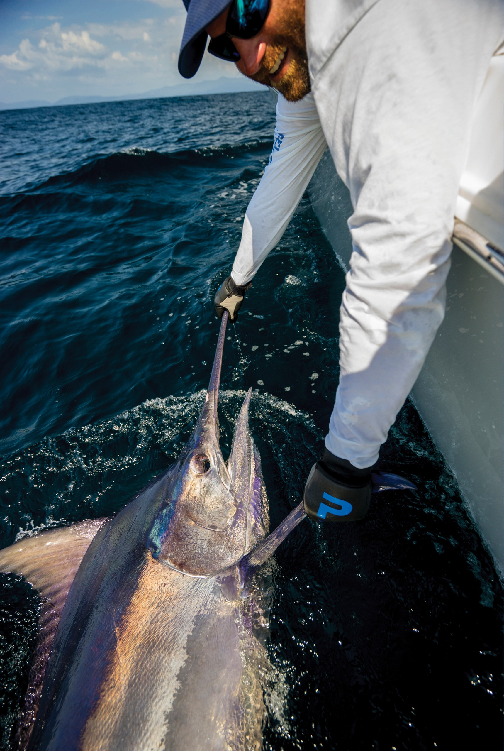 a nice black marlin getting ready to be released boatside