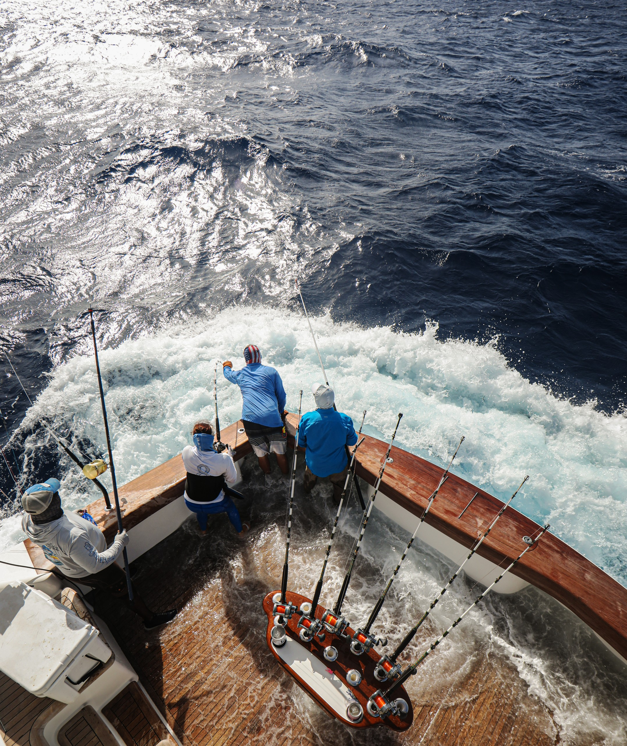 crew members ready the tag and release of a blue marlin