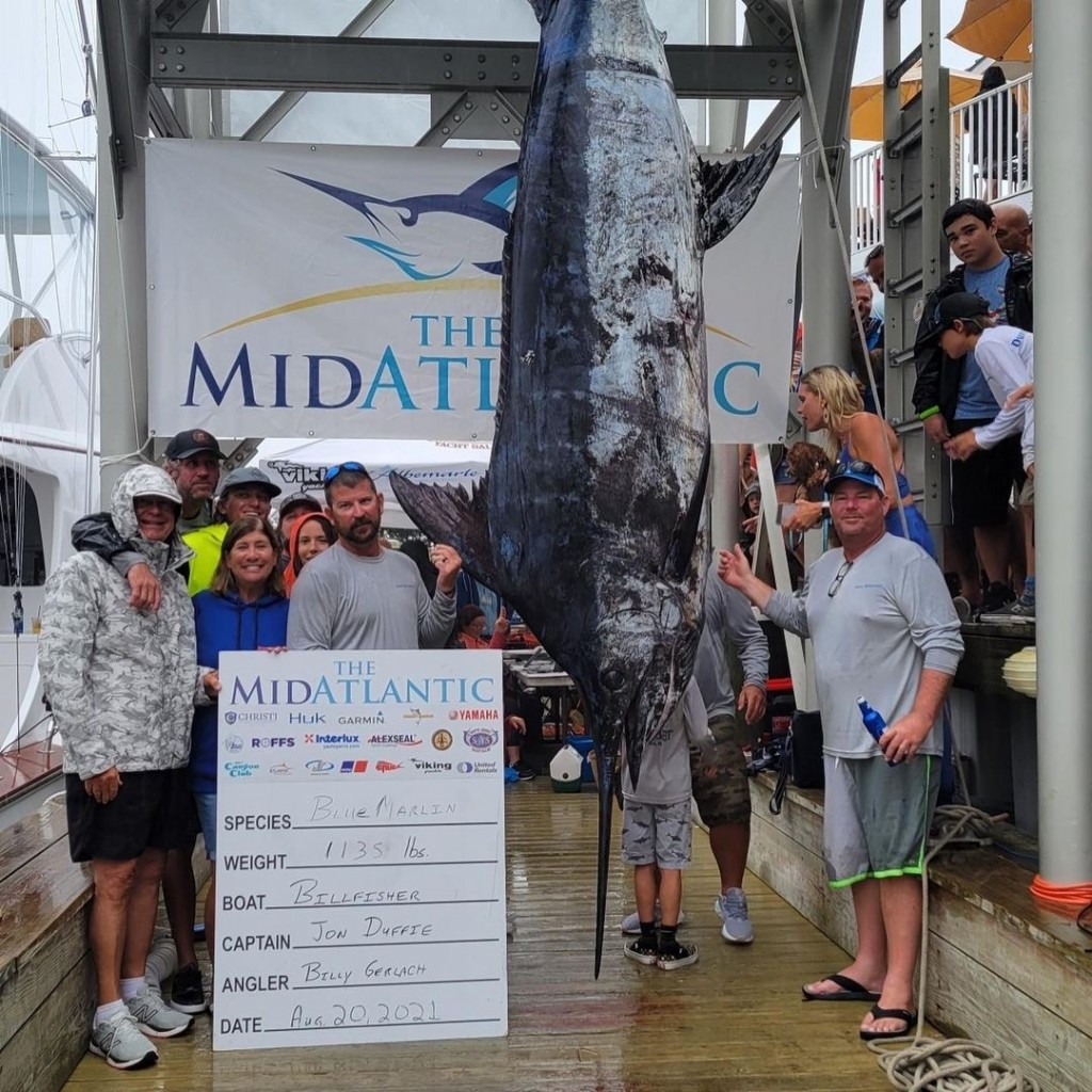 30th MidAtlantic Wraps Up with Potential State Record Blue Marlin