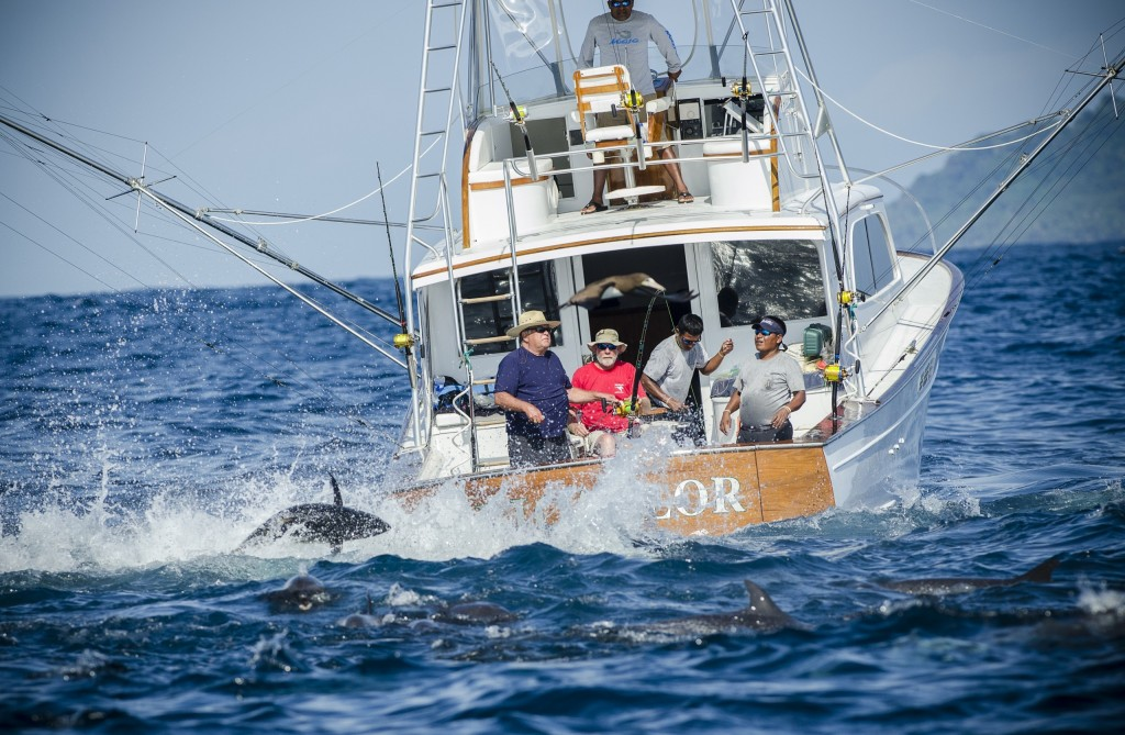sportfishing boat going after tuna